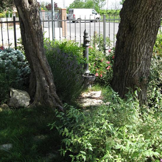 Manutenzione giardini modena e provincia la torretta for Manutenzione giardini