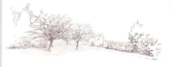 Progettazione giardini modena la torretta for Disegno giardini